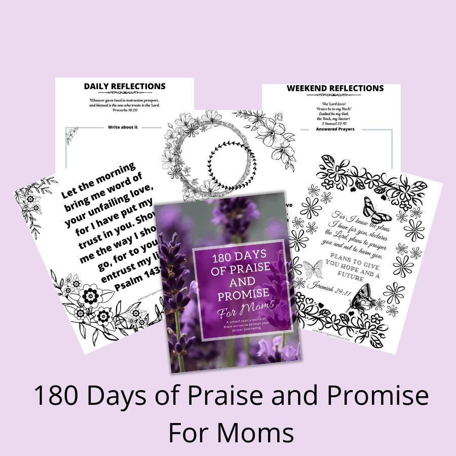 180 Days of Praise and Promise for Moms - Prayer Journal