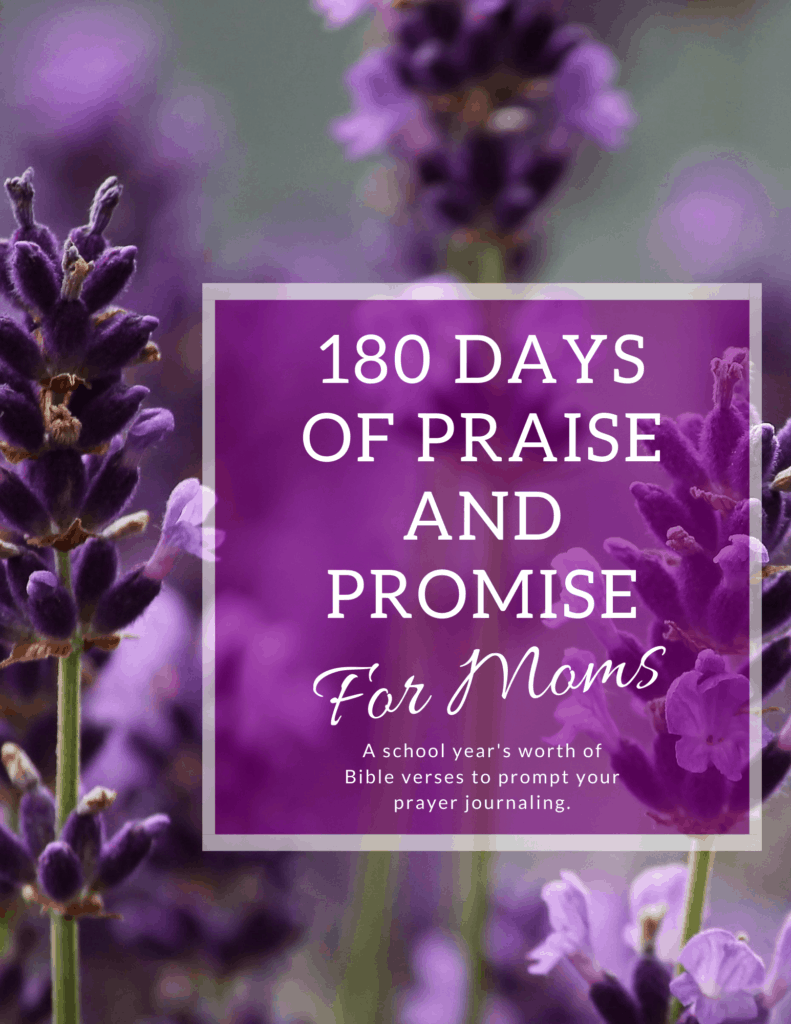 180 Days of Praise and Promise for Moms - A School Year Prayer Journal