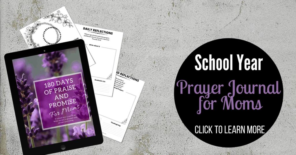 180 Days of Praise and Promise for Moms - Prayer Journal