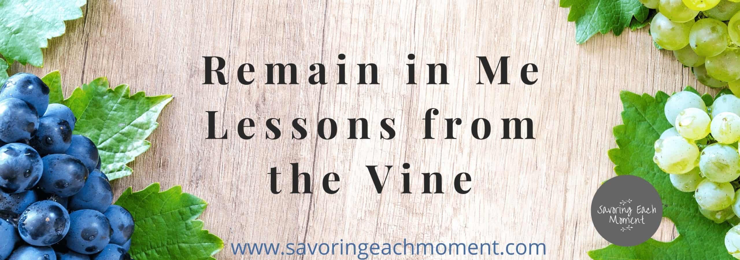Remain in Me - Lessons from the Vine